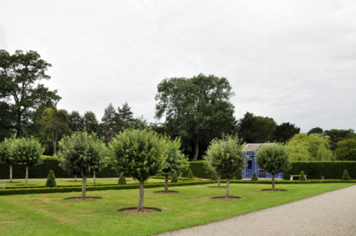The Fruit Garden- Hanbury Hall, Worcestershire, UK 2020
